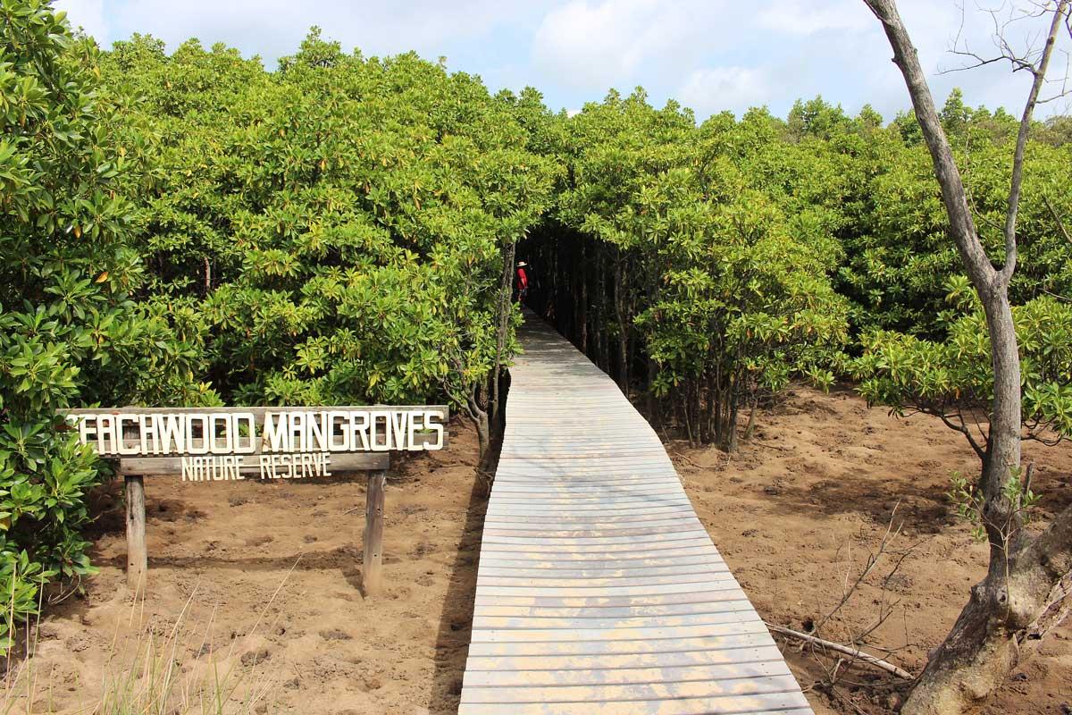 Beachwood Mangroves beach entrance